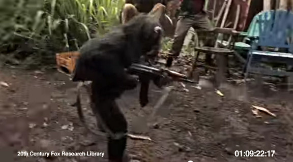 Ape With AK-47 - YouTube (2)