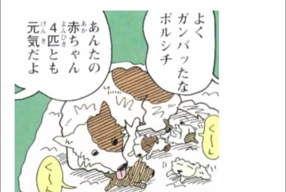 シロ (クレヨンしんちゃん)の画像 p1_14