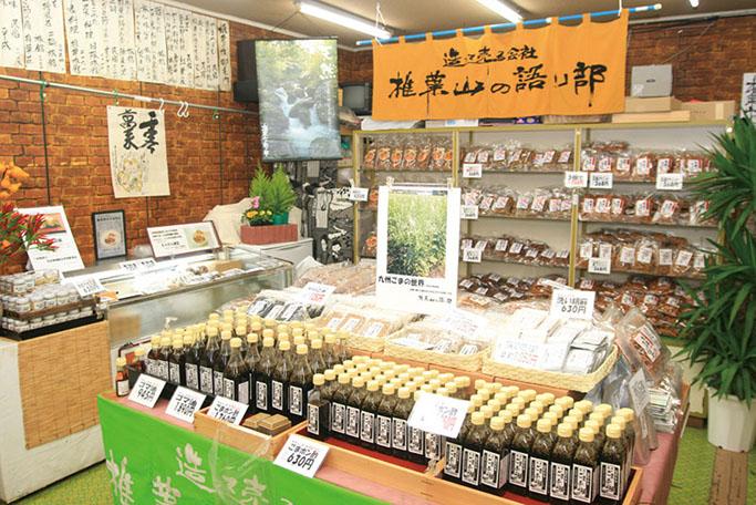 shiibakataribe