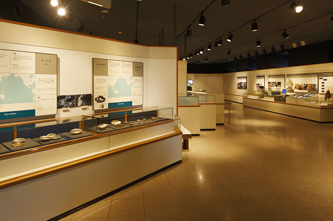 museum_p5