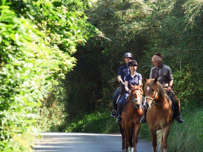 horsetrekking02