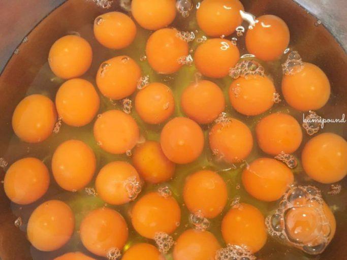くみぱうんど卵