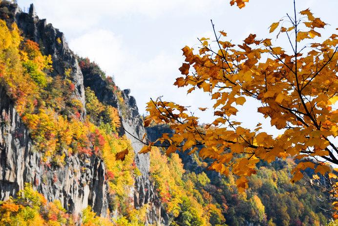 岩肌に映える紅葉